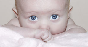 Baby girl eyes portrait Royalty Free Stock Photos