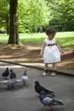 Baby girl feeding pigeons Royalty Free Stock Image