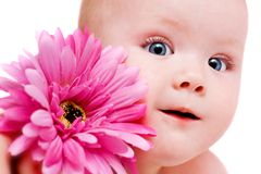 Baby girl with flower. Portrait of beautiful baby girl with flower royalty free stock images