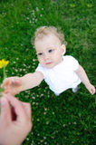 Baby girl with flower Royalty Free Stock Photography