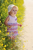 Baby girl with flower Stock Image
