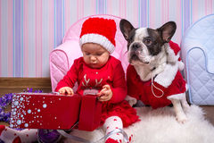 Baby girl with french bulldog in santa helper costumes Stock Photo