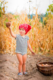 Baby girl on the garden with harvest of potatoes in the basket near field  dry corn  background. Dirty child in red Stock Photo