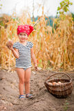 Baby girl on the garden with harvest of potatoes in the basket near field  dry corn  background. Dirty child in red Royalty Free Stock Image