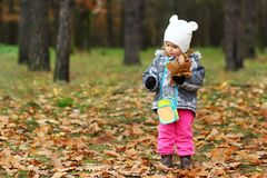 Baby girl gathering oak leaves in the forest Stock Image