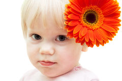 Baby girl with gerberas in hair stock photo
