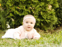 Baby girl in the grass Stock Photo