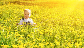 Baby girl on a green meadow with yellow flowers Stock Images