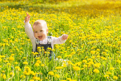 Baby girl on a green meadow with yellow flowers Royalty Free Stock Image
