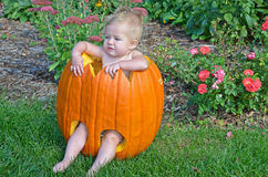Baby girl in Halloween pumpkin Royalty Free Stock Photos