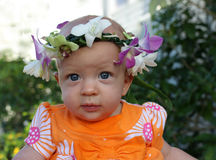 Baby girl with head lei. Baby girl wears a flower lei on her head Stock Image