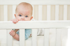 Baby girl in her crib. 5 moths old baby girl biting a white wooden crib Stock Image