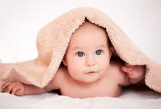 Baby girl is hiding under the white blanket. Baby is hiding under the white blanket Royalty Free Stock Photo