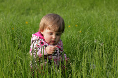 Baby girl in the high grass Stock Photos