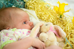 Baby girl inside of basket with spring flowers. Royalty Free Stock Photography