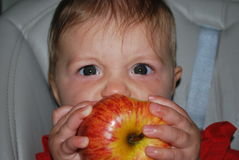 Baby girl. Kid biting a juicy apple royalty free stock photos