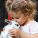 Baby girl kissing baby rabbit. Stock Photos