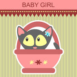 Baby girl kitten card Stock Photos
