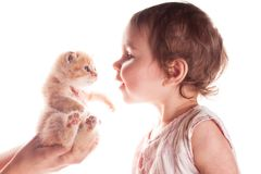 Baby girl and kitten Stock Image