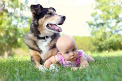 Baby Girl Laying Outside with Pet German Shepherd Dog royalty free stock photo
