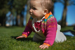Baby girl learning to crawl at grass park Stock Photos
