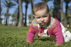 Baby girl learning to crawl at grass park Stock Images