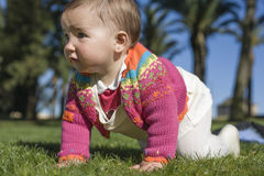 Baby girl learning to crawl at grass park Royalty Free Stock Image