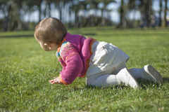 Baby girl learning to crawl at grass park Royalty Free Stock Photo