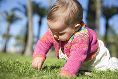 Baby girl learning to crawl at grass park Stock Image