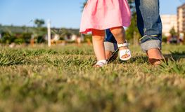 Baby girl learning to walk over a grass park Stock Photography