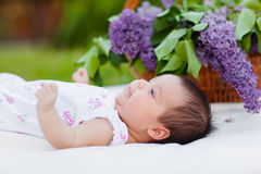 Baby girl  with lilac bouquet in basket Royalty Free Stock Photography