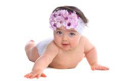Baby Girl looking at the camera royalty free stock photos