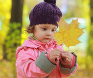 Baby girl looking on maple leaf Stock Photos