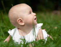 Baby girl lying on grass Stock Photo