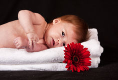 Baby girl lying on white towels Stock Photos