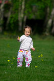 Baby girl on the meadow Royalty Free Stock Photos