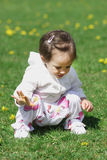 Baby girl on the meadow Royalty Free Stock Photography