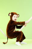Baby girl in monkey costume. Over green background Stock Images