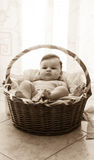 Baby girl in moses basket stock images