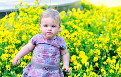 Baby girl near pansy Royalty Free Stock Photo