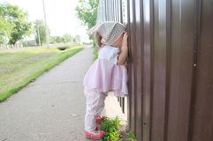 Baby girl peeping through hole in fence. Child looking. On something stock photo