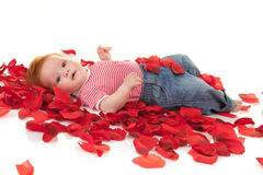 Baby girl on petals roses Stock Images