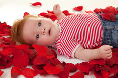 Baby girl on petals roses Stock Photo