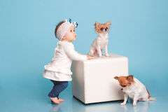 Baby girl with pets Stock Images