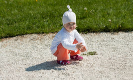 Baby girl picking small stones Royalty Free Stock Image