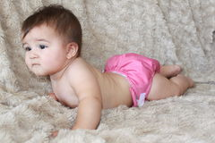 Baby girl in pink cloth diaper. Baby girl lying down on stomach wearing a pink cloth diaper against a beige background Royalty Free Stock Photography