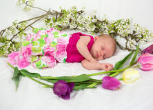 Baby girl in pink inside of basket with spring flowers. Royalty Free Stock Photography
