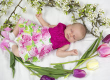 Baby girl in pink inside of basket with spring flowers. Royalty Free Stock Images
