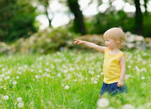 Baby girl playing with dandelions outdoors Stock Photo