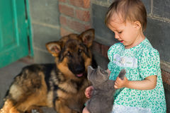 Baby girl playing with pets. Near the house royalty free stock image